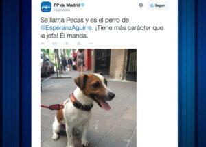 1431608649_168111_1431611182_noticia_normal